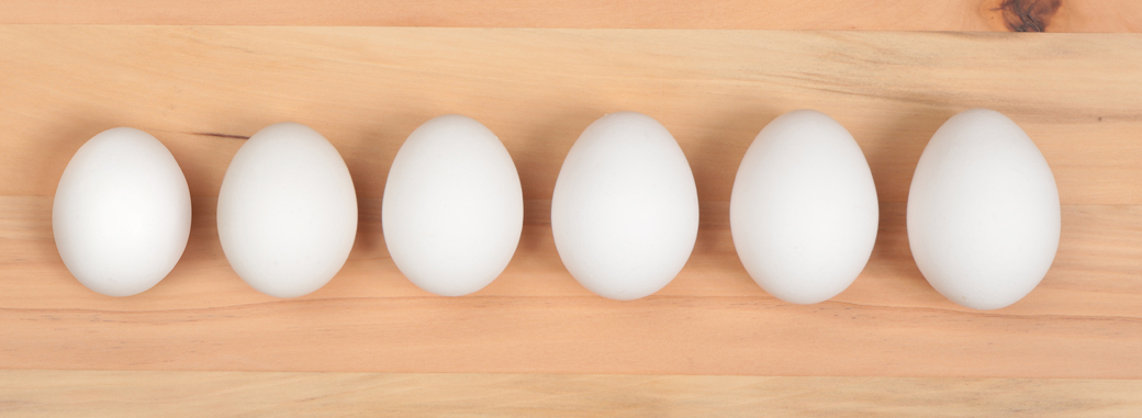 Eggs 101 - Introduction to the Egg » Eggs.ca